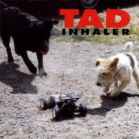 tad_inhaler