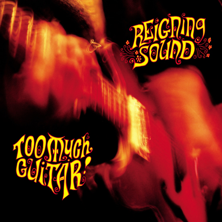 reigning_sound_too_much_guitar